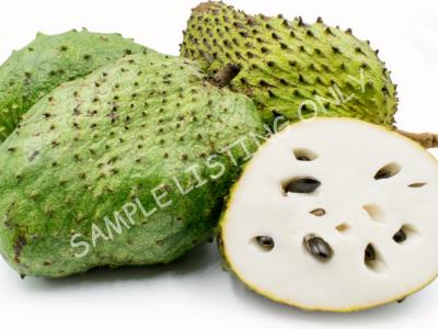 Soursop Fruit, Graviola And Cherimoya Fruit